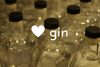 gin (4)