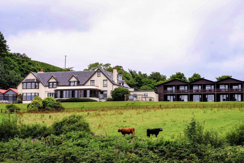 Loch Melfort Hotel Highland Cows
