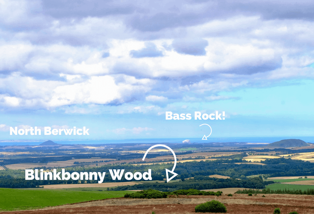 Location of Blinkbonny Wood