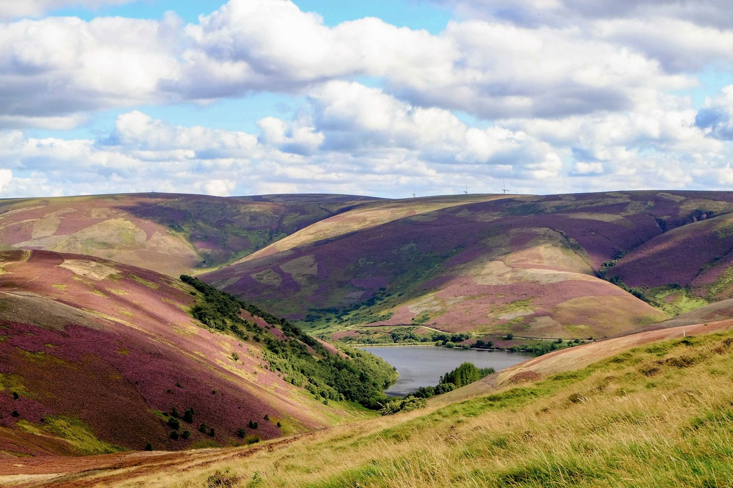 Hopes Reservoir Lammermuir Hills