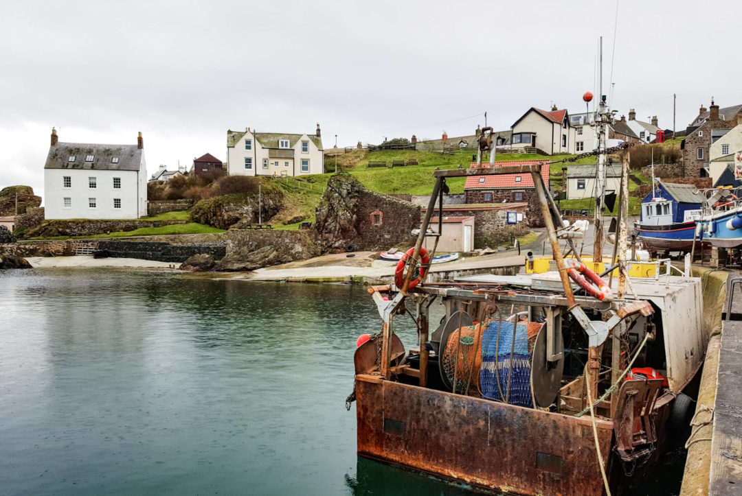 Six reasons to visit St Abbs, Scottish Borders