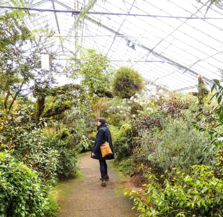 A botanical wonderland