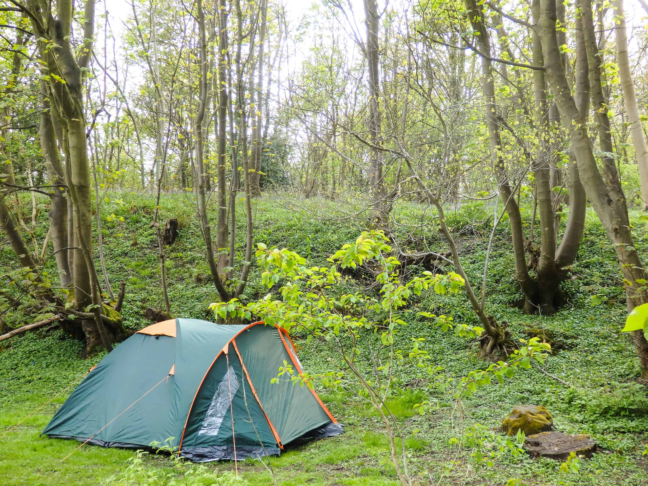 Campsites near Edinburgh