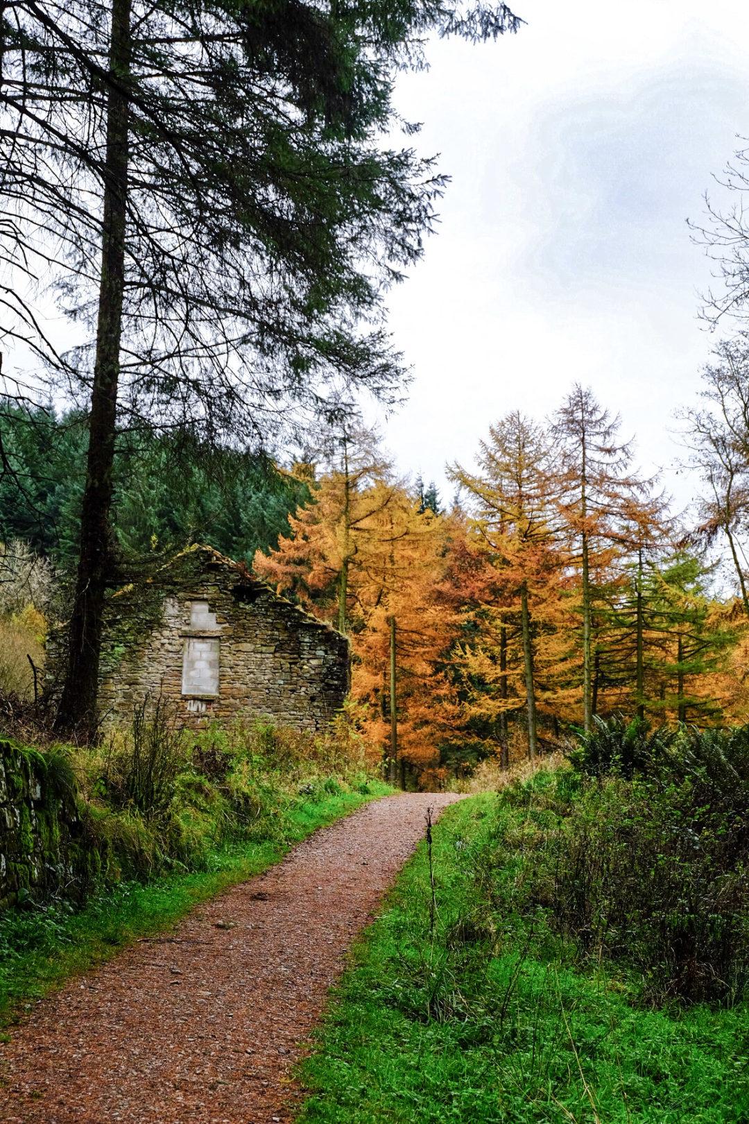 Peak District walks East Cheshire