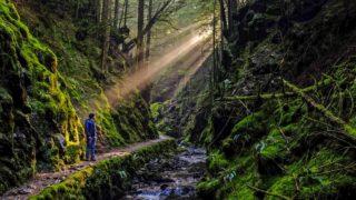 Cowal - Scotland's hidden gems