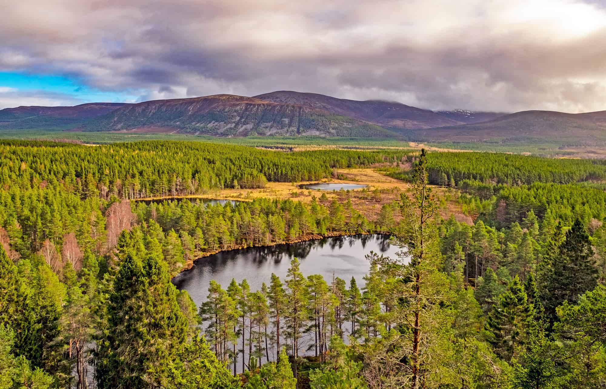 The complete guide to Aviemore & the Cairngorms