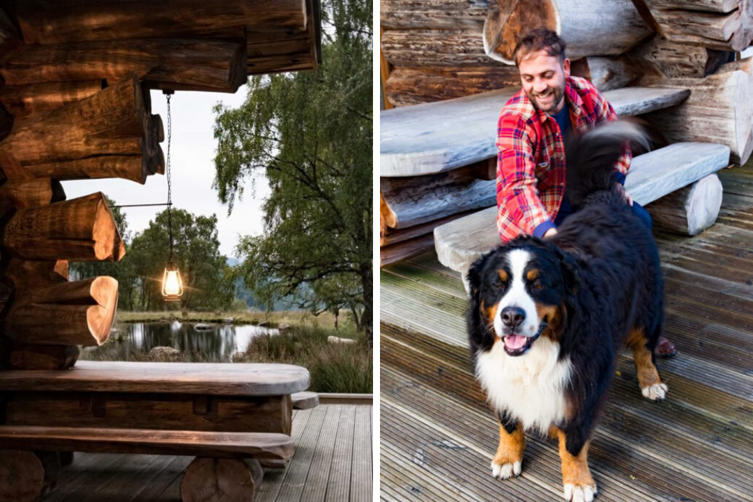 Dog friendly log cabins in Scotland