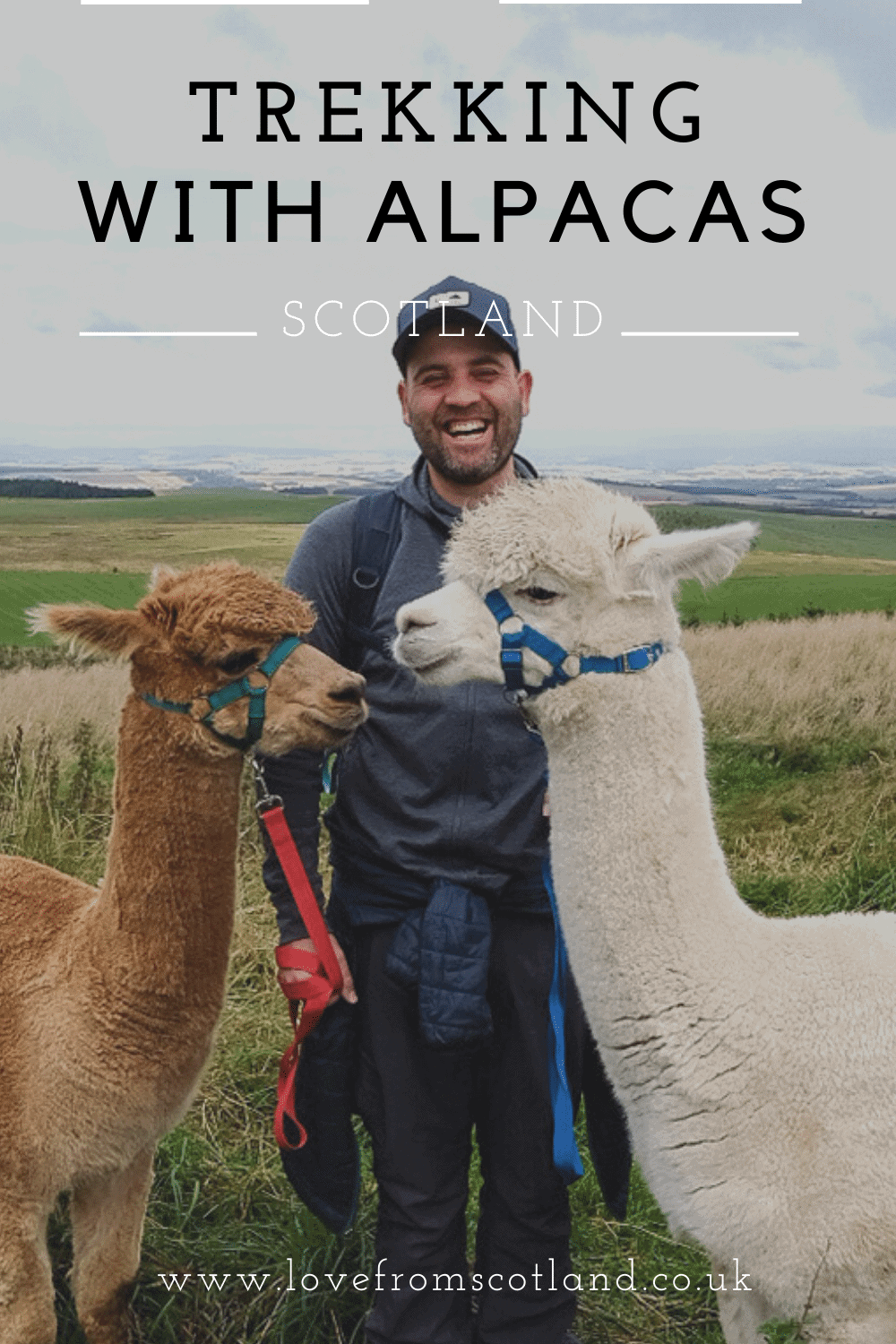 Fancy going trekking with an alpaca? Let\'s go alpaca walking at Beirhope Farm in the Scottish Borders. Meet your new best furry friends!
