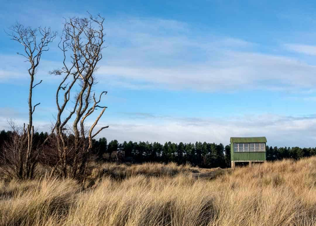 Tentsmuir Beach Pillboxes