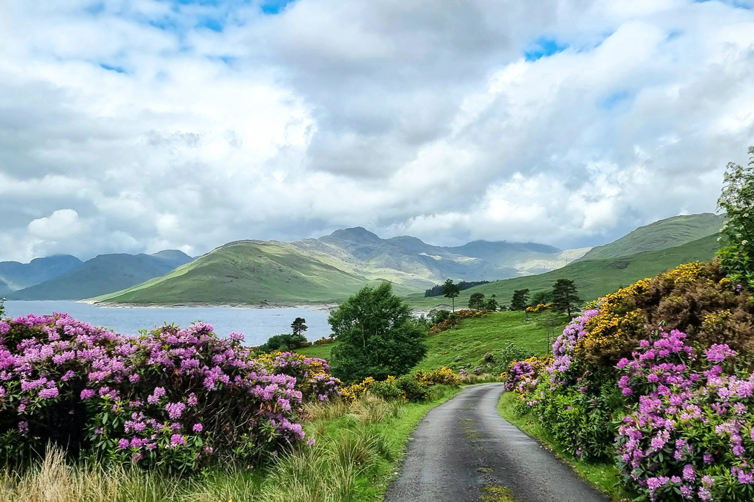 Drive to Kinloch Hourn